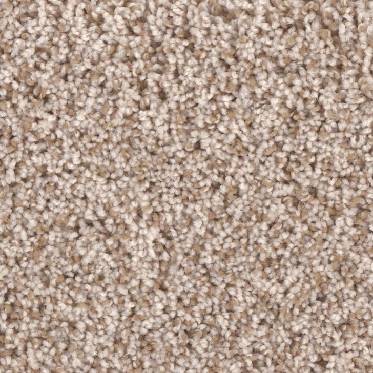 Phenix Riverbend II N258 Residential Carpet