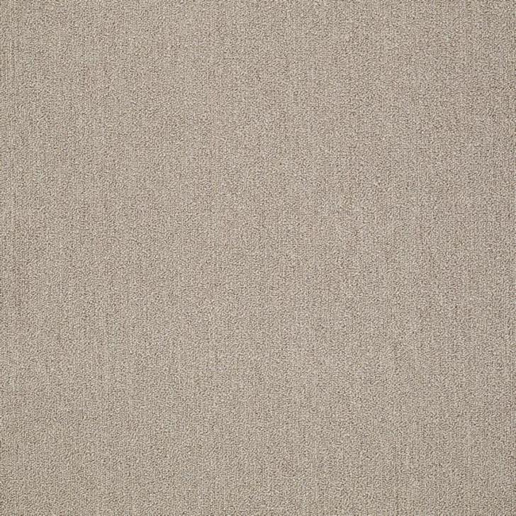 Shaw Philadelphia All Business Function 54765 Commercial Carpet