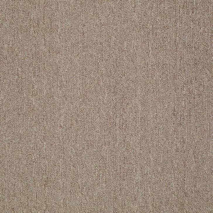 Shaw Philadelphia Neyland III 26 15' 54768 Commercial Carpet