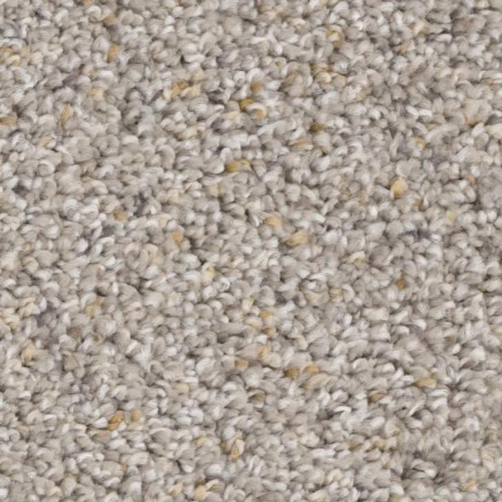 Phenix Appealing N273 Residential Carpet