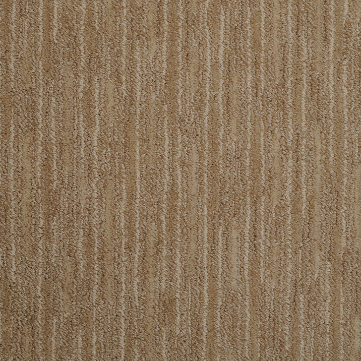 Masland Artistic Vision 9516 StainMaster Residential Carpet