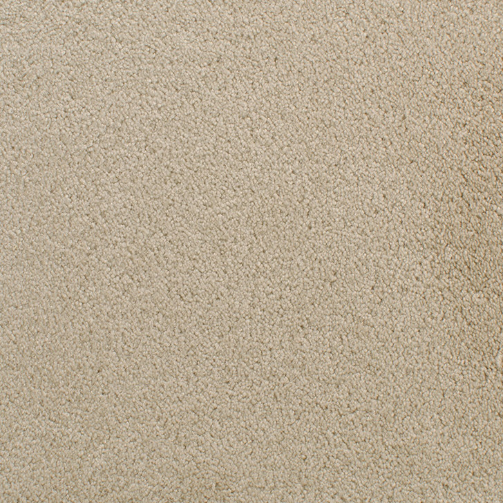 Fabrica Accolade 209AC StainMaster Residential Carpet