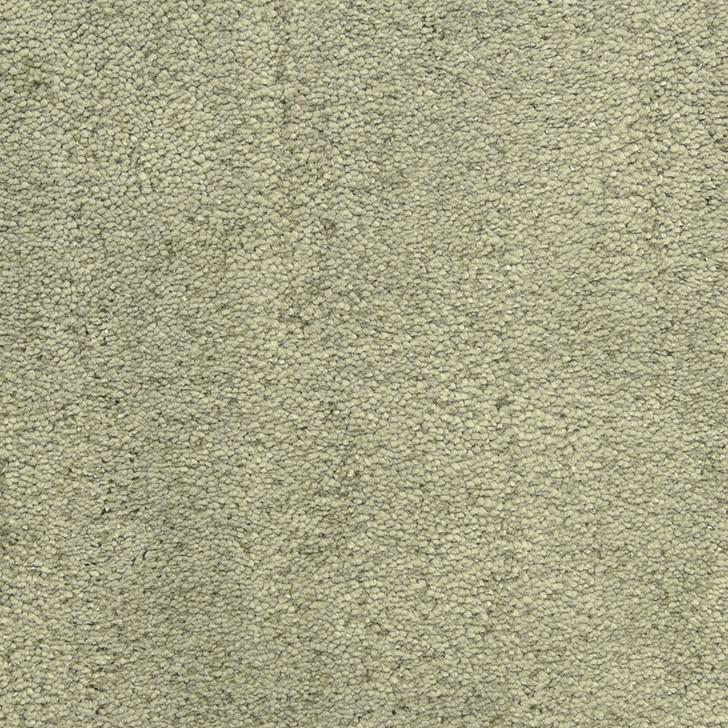Fabrica Desert Vista 451DV StainMaster Residential Carpet
