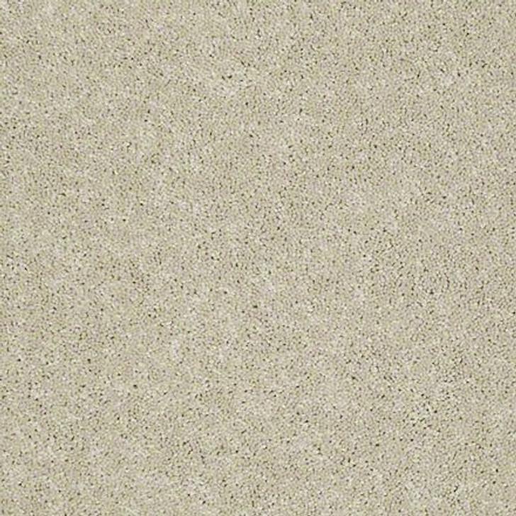 Georgia Carpet NewBerry II 15' 7K542 Residential Carpet