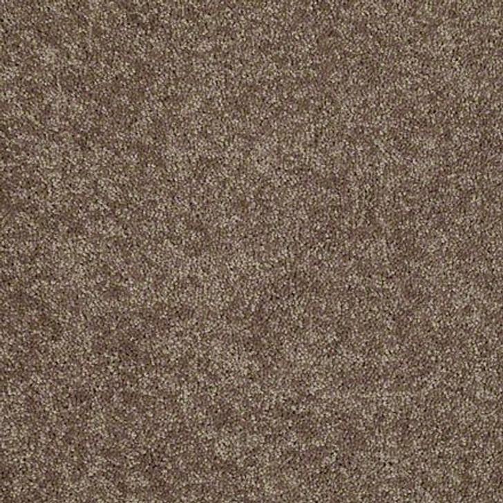 Georgia Carpet NewBerry II 12' 7K540 Residential Carpet