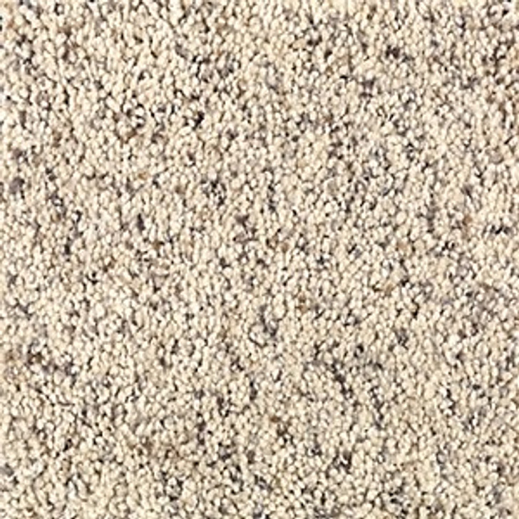 Mohawk Wear-Dated Relaxed Moment I 1W65 Residential Carpet