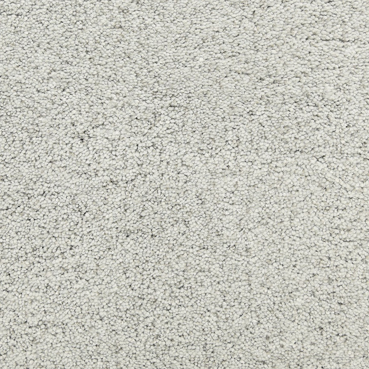 Fabrica Pacific Grove 808PG StainMaster Residential Carpet