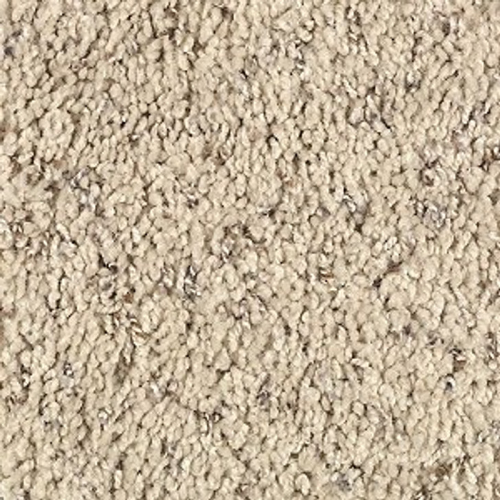 Mohawk Wear-Dated Design Duo (F) Residential Carpet
