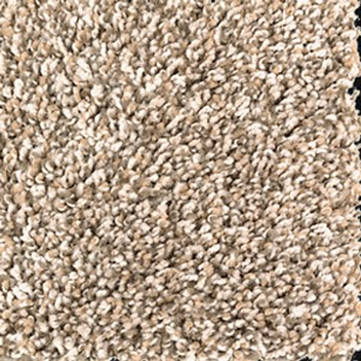 Mohawk Everstrand Trailblazer 2U04 Residential Carpet