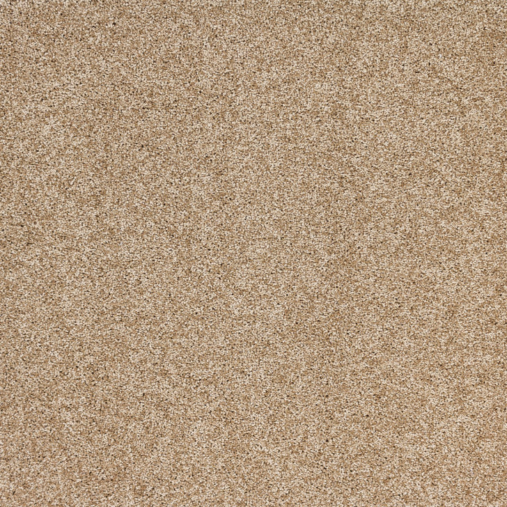 Southwind Aurora Radiant Beauty A103 Residential Carpet
