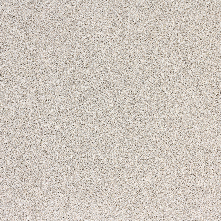 Southwind Soft Solutions Real Appeal P239 Residential Carpet