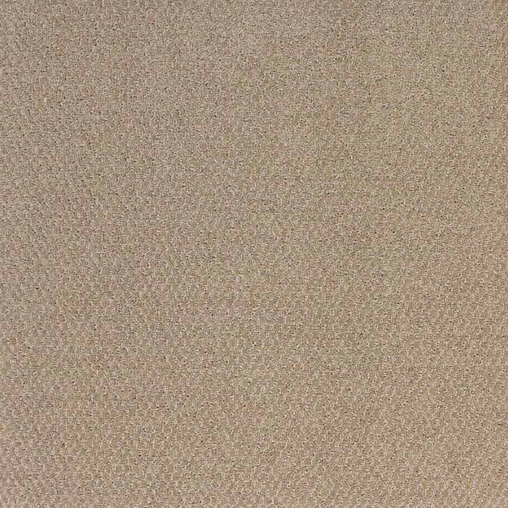 Southwind Soft Solutions Sonoma P352 Residential Carpet