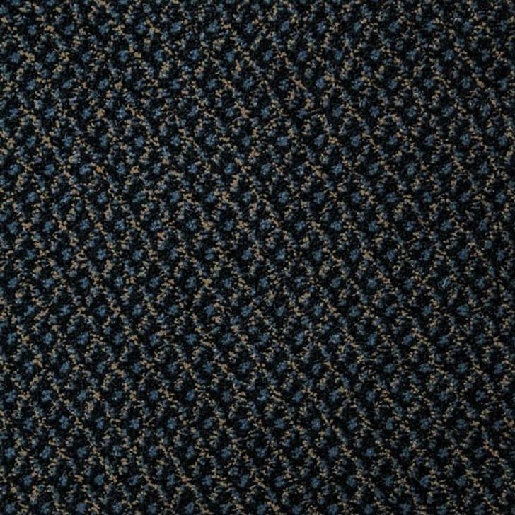 Georgia Carpet SH1920 Nylon Light Commercial Carpet