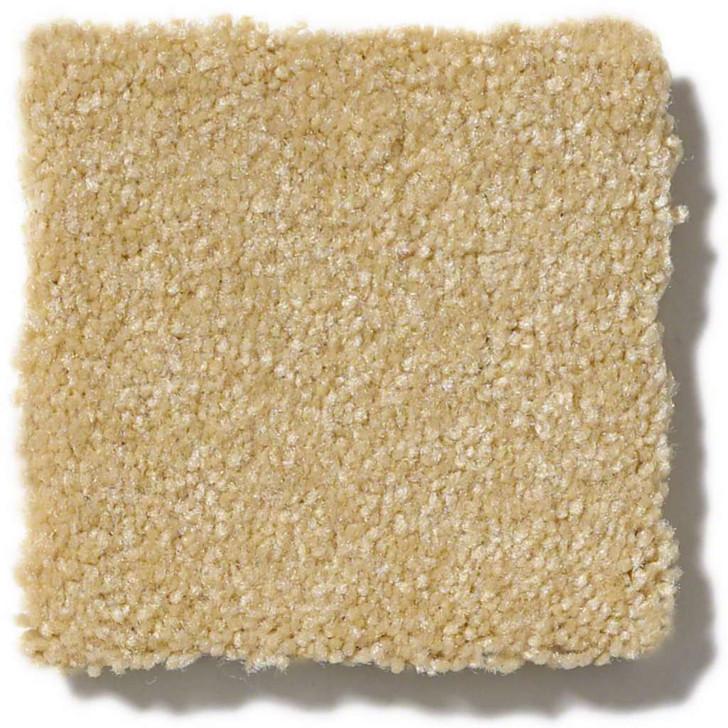 Georgia Carpet Timeless Texture II 15' Residential Carpet