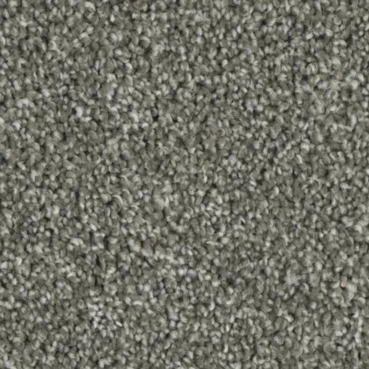 Georgia Carpet Charming 5440 Residential Carpet