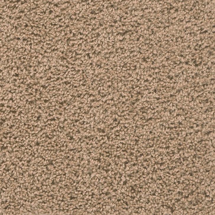 Georgia Carpet Front Seat (S) 5S325 Residential Carpet
