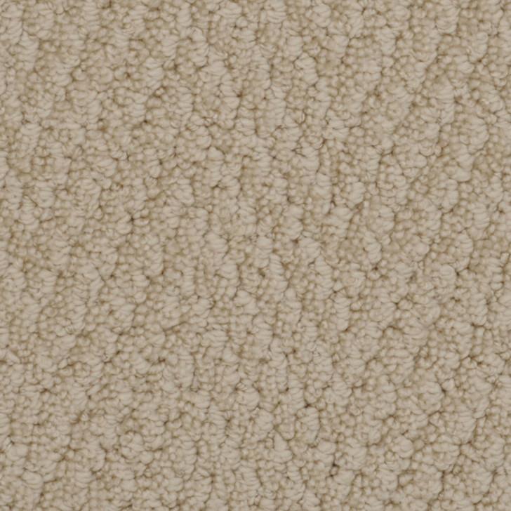 Fabrica Bistango 526BI StainMaster Residential Carpet
