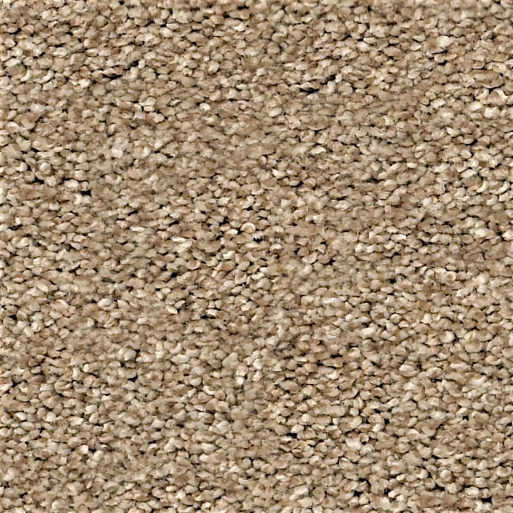 Georgia Carpet Allure Polyester Residential Carpet