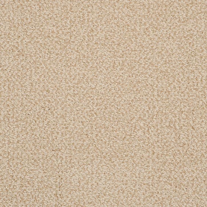 Fabrica Breakers 522BK StainMaster Residential Carpet