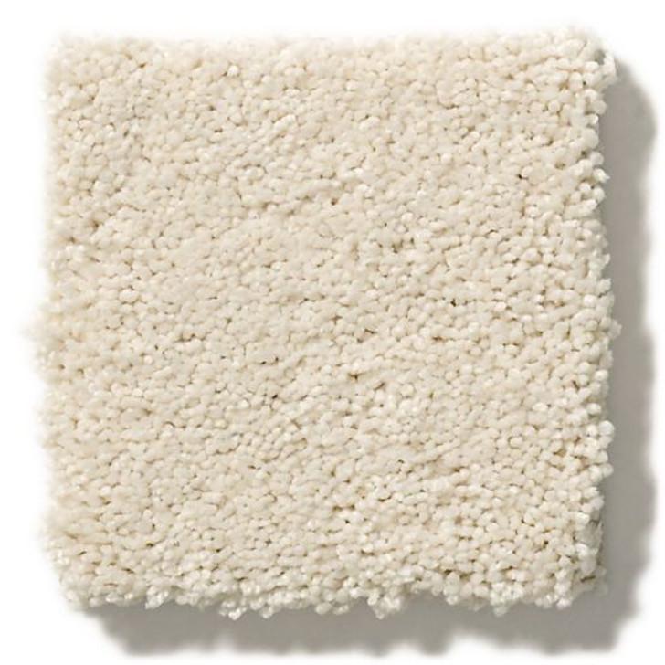 Anderson Tuftex Artistry Free Form ZZ001 Residential Carpet