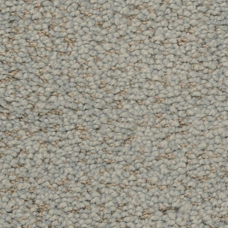 Fabrica Mia Bella 804MB StainMaster Residential Carpet