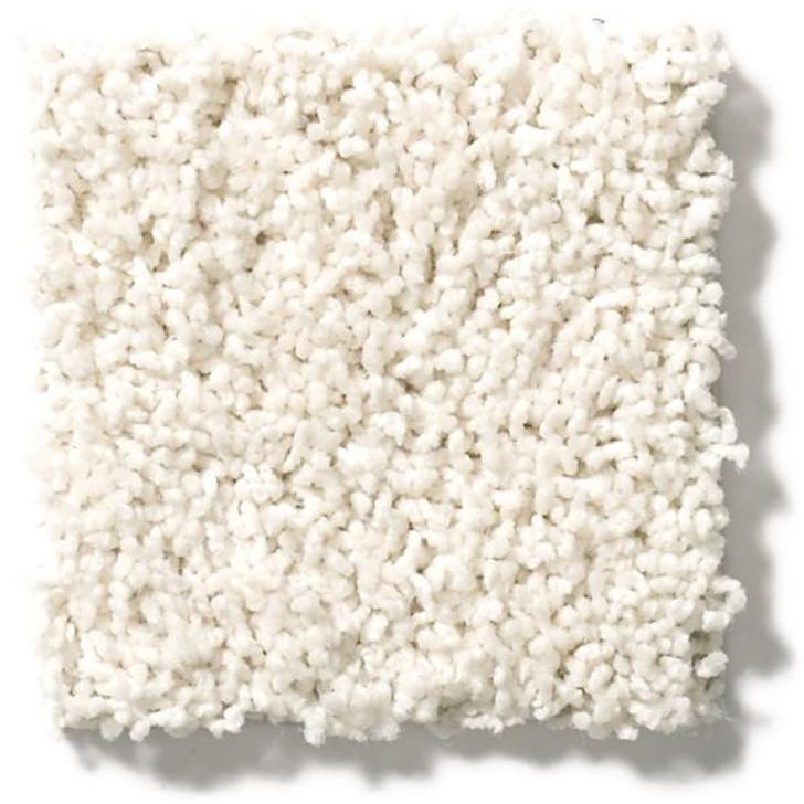 Anderson Tuftex Classics Del Morro ZZ021 Residential Carpet