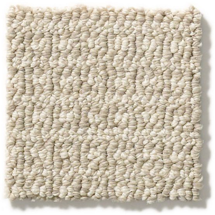 Anderson Tuftex Unleashed Fetch ZZ074 Residential Carpet