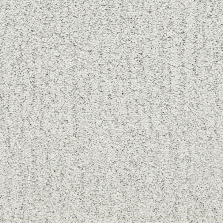 Fabrica Monterey 806MY StainMaster Residential Carpet