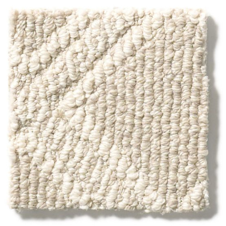 Anderson Tuftex Unleashed Scout ZZ073 Residential Carpet