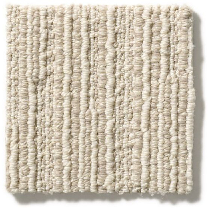 Anderson Tuftex Unleashed Chase ZZ075 Residential Carpet