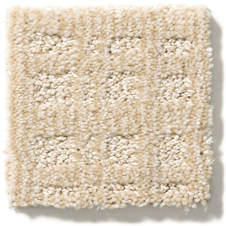 Anderson Tuftex Unleashed Purrsuasion ZZ082 Residential Carpet
