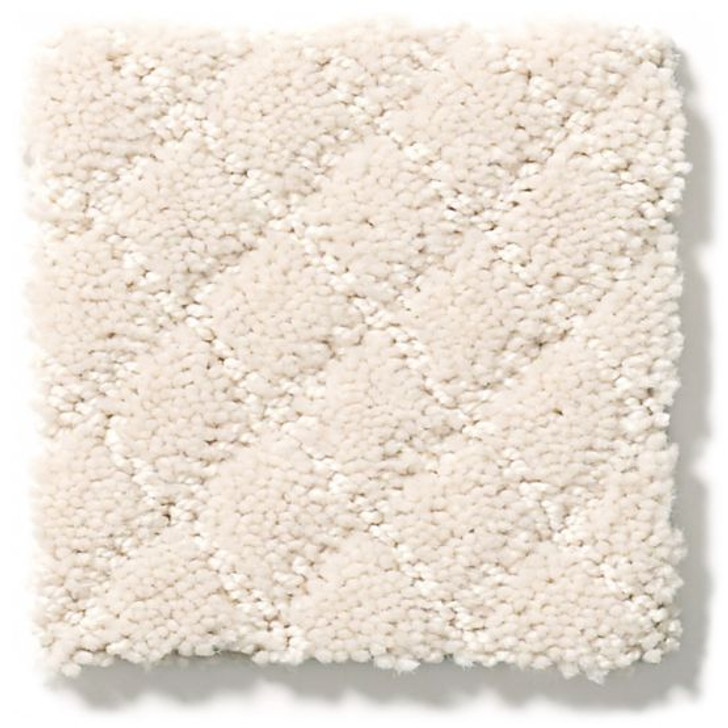 Anderson Tuftex Unleashed Pawnache ZZ080 Residential Carpet