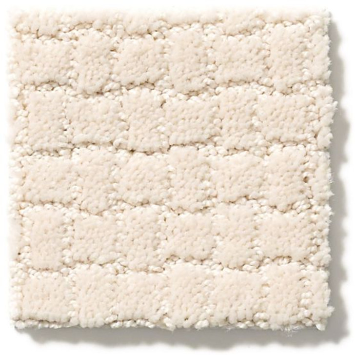 Anderson Tuftex Unleashed Pawstruck ZZ081 Residential Carpet