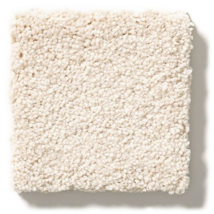 Anderson Tuftex Unleashed Pawparazzi I ZZ092 Residential Carpet