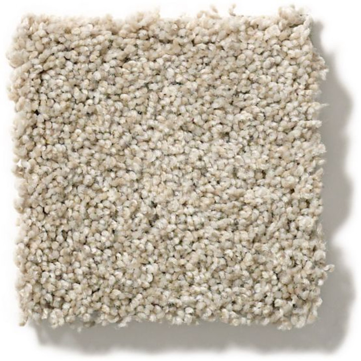 Anderson Tuftex Unleashed The Bark Side II Residential Carpet