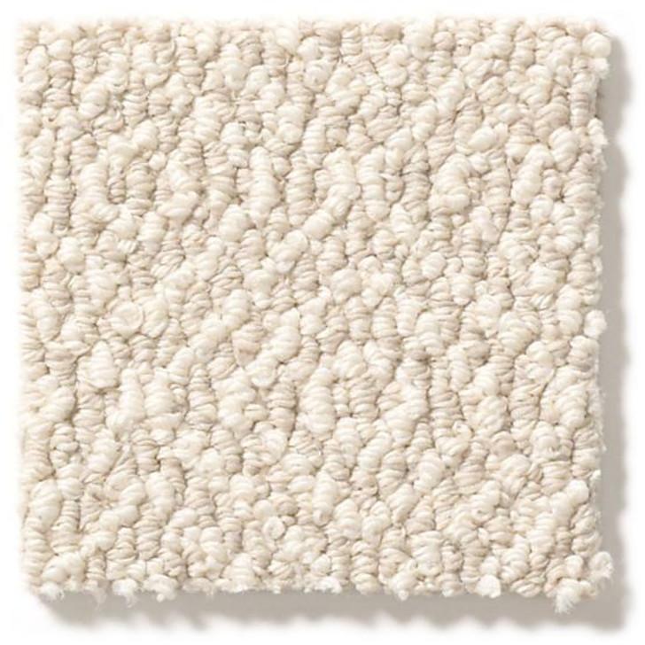 Anderson Tuftex Stroll ZZ050 Residential Carpet
