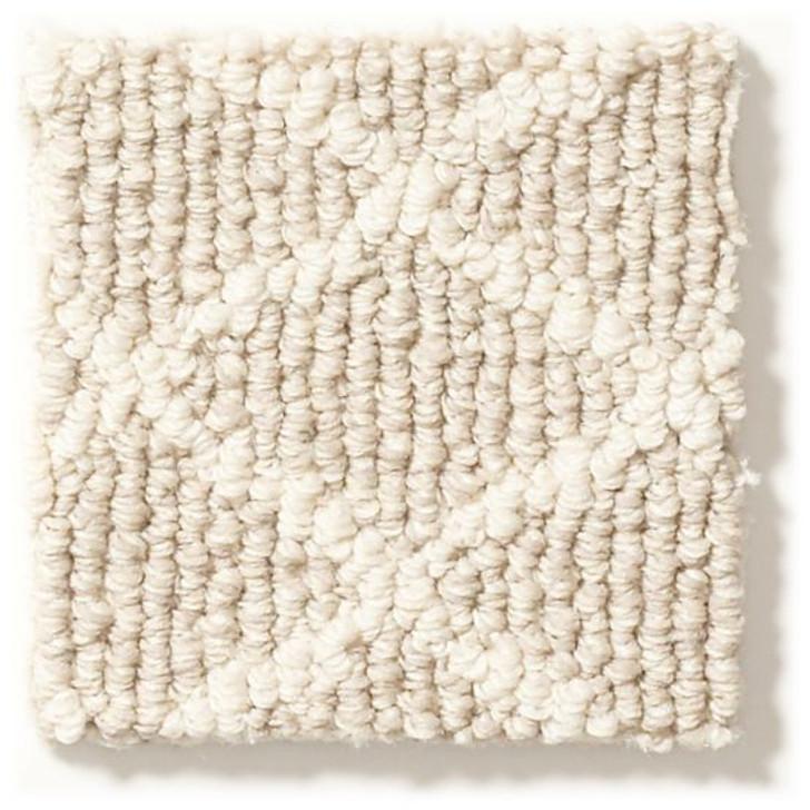 Anderson Tuftex Springer's Point ZZ049 Residential Carpet