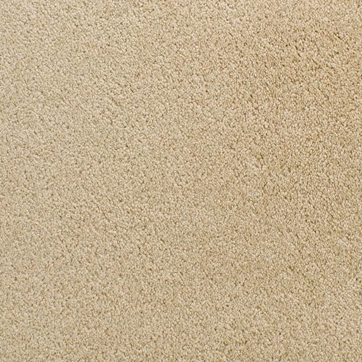 Fabrica Denali 210DN StainMaster Residential Carpet