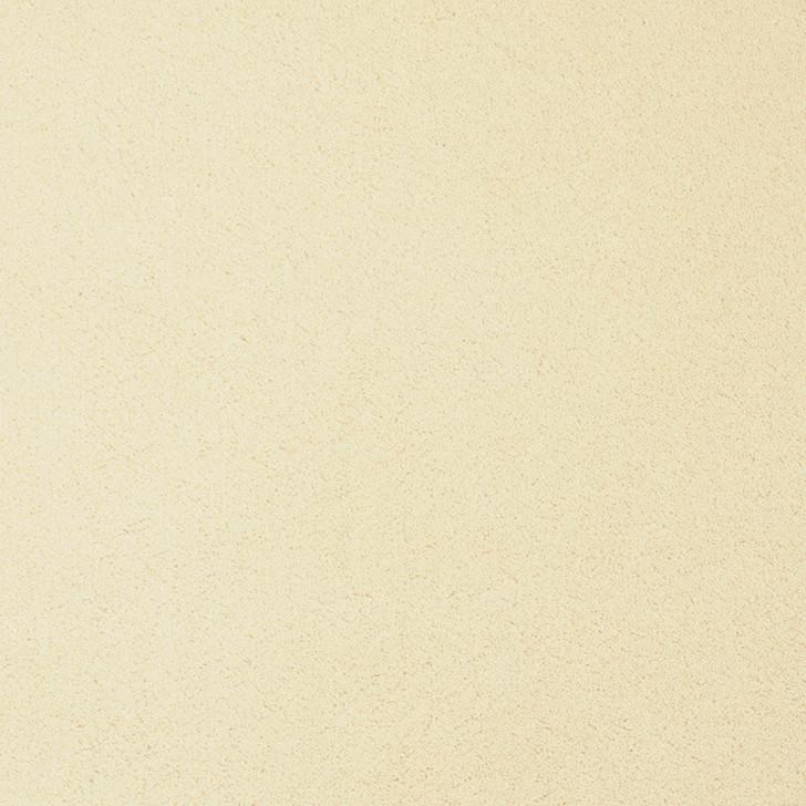 Fabrica Chez 100 204CH Nylon Residential Carpet