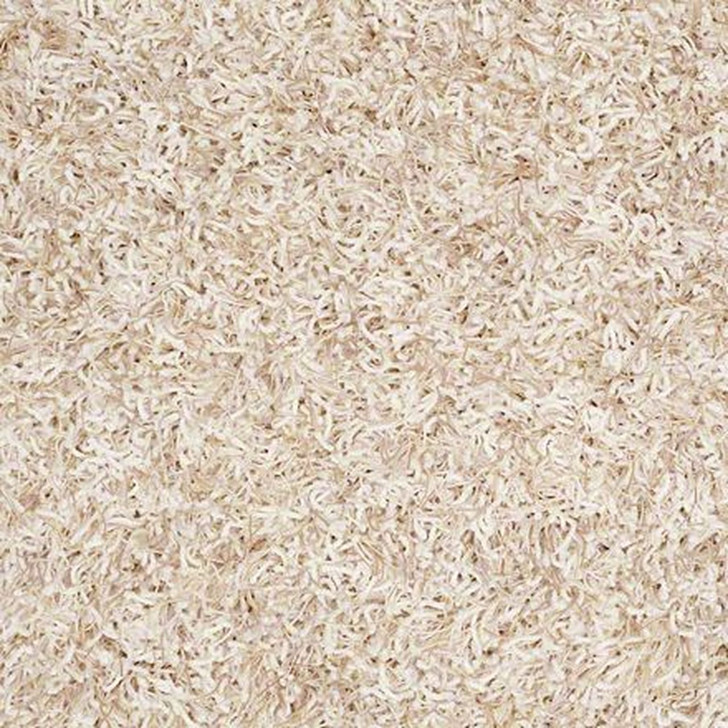 Anderson Tuftex Bling Z6809 Residential Carpet