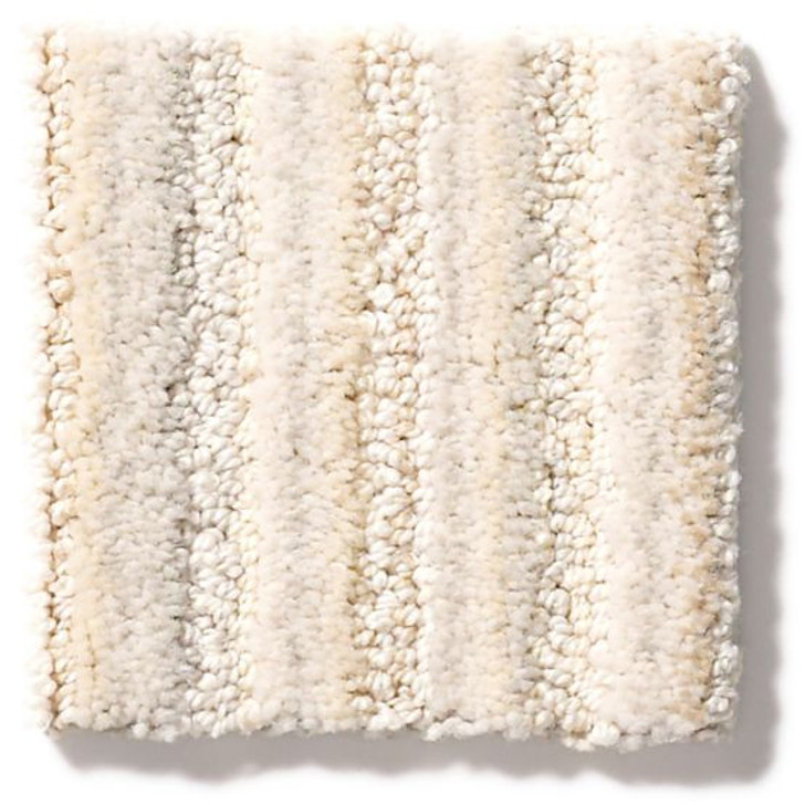 Anderson Tuftex Wizard of Paws ZZ220 Residential Carpet