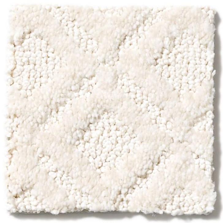Anderson Tuftex Cutting Edge ZZ031 Residential Carpet
