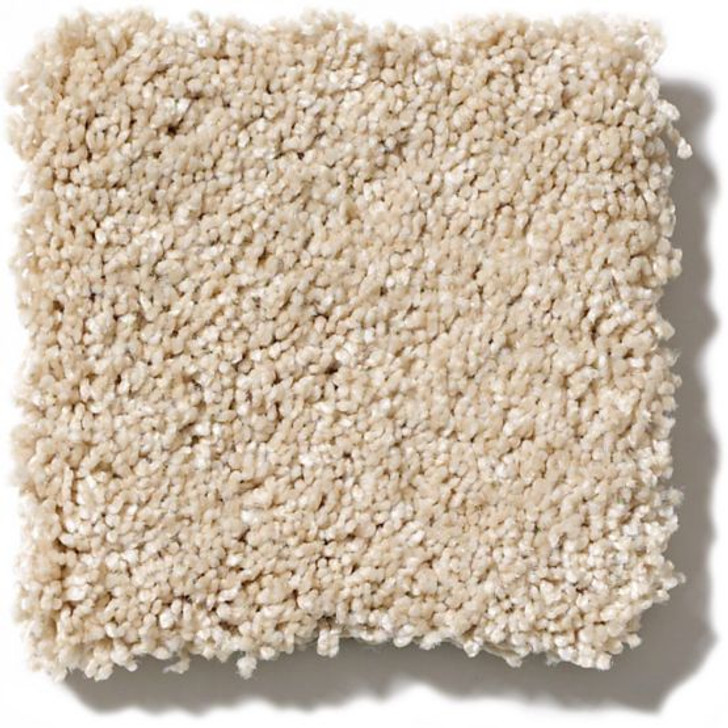 Anderson Tuftex Shuffle ZZ034 Residential Carpet