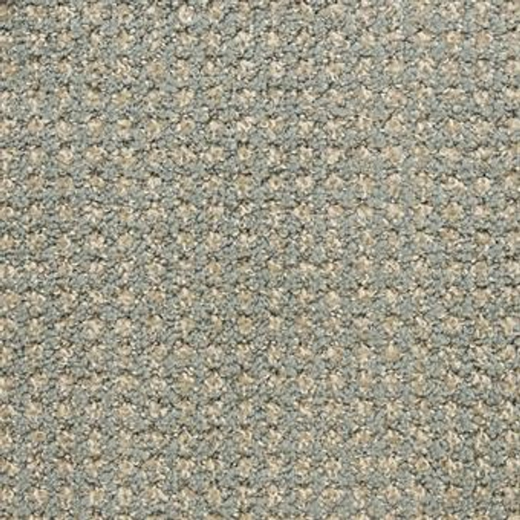 Masland Alpha 9599 Residential Carpet