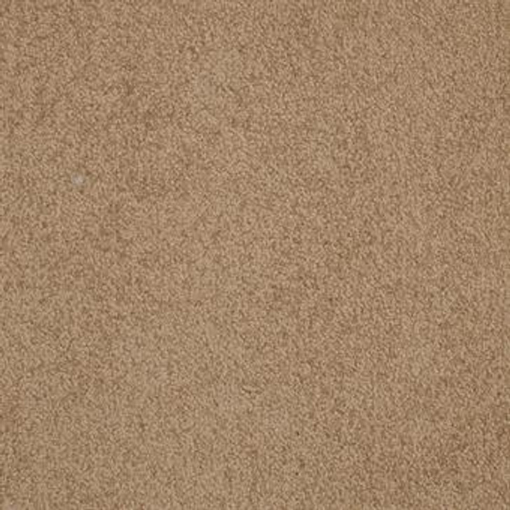 Masland Americana 9439 StainMaster Residential Carpet