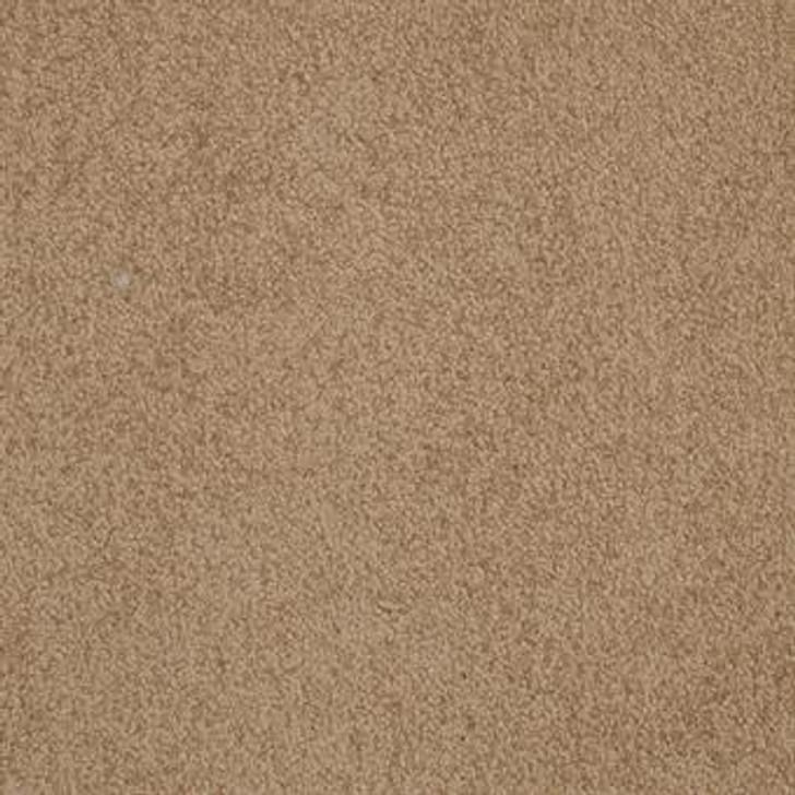 Masland Americana 9439 StainMaster Residential Carpet