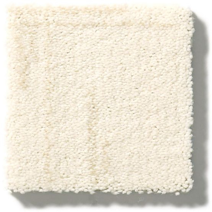 Anderson Tuftex Rhythmic ZZ063 Residential Carpet