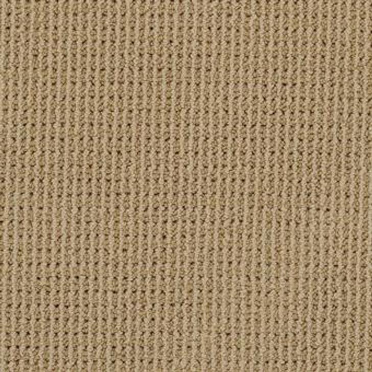 Masland Bandala 9352 StainMaster Residential Carpet