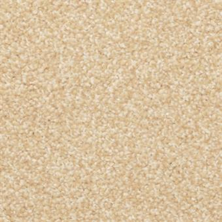 Masland Beacon Hill 9527 StainMaster Residential Carpet