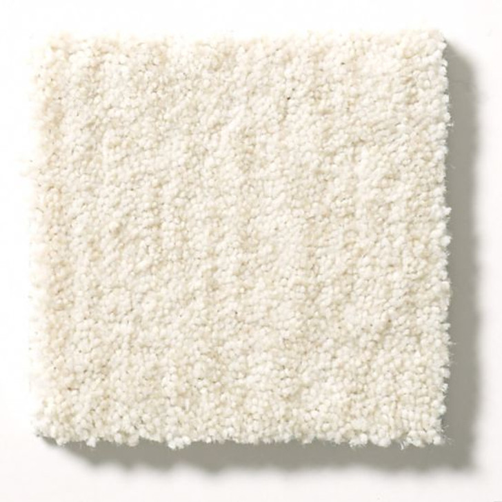 Anderson Tuftex New Wave ZZ056 Residential Carpet